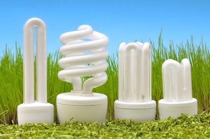 Energiesparlampen richtig entsorgen - © Carmen Steiner - Fotolia.com